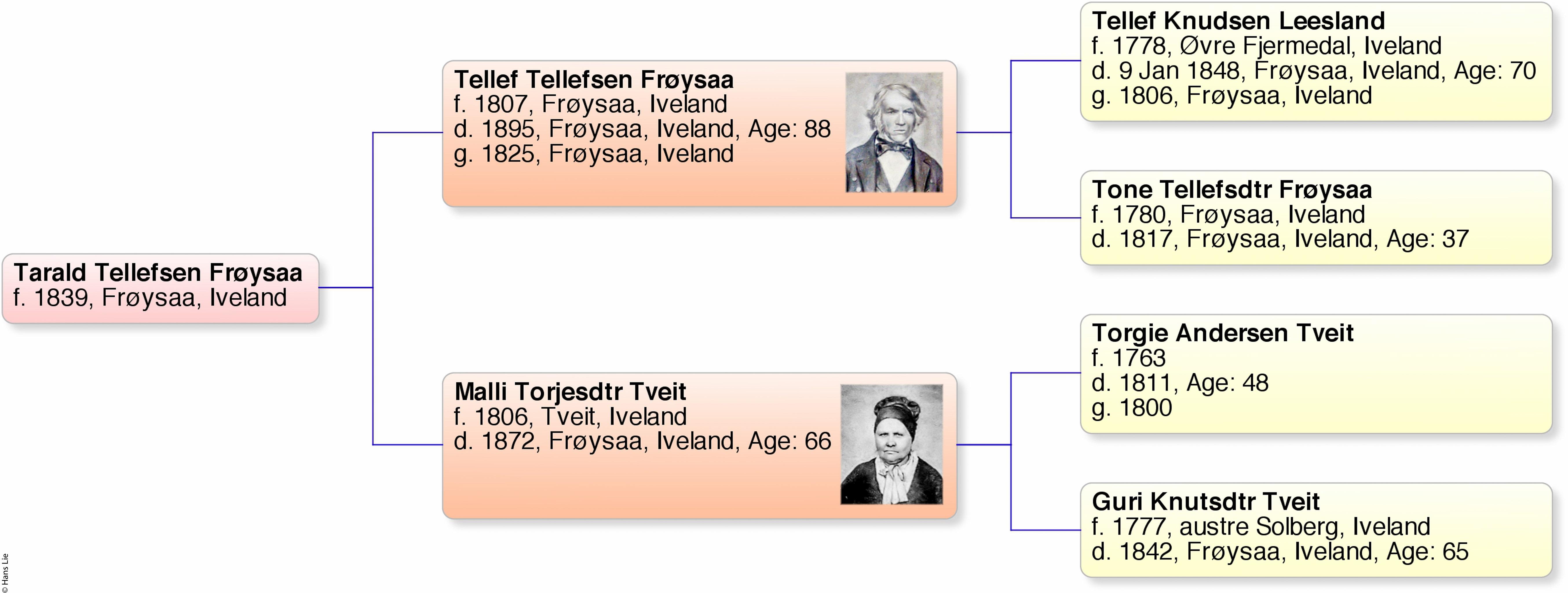 tarald-tellefsen-froysaa