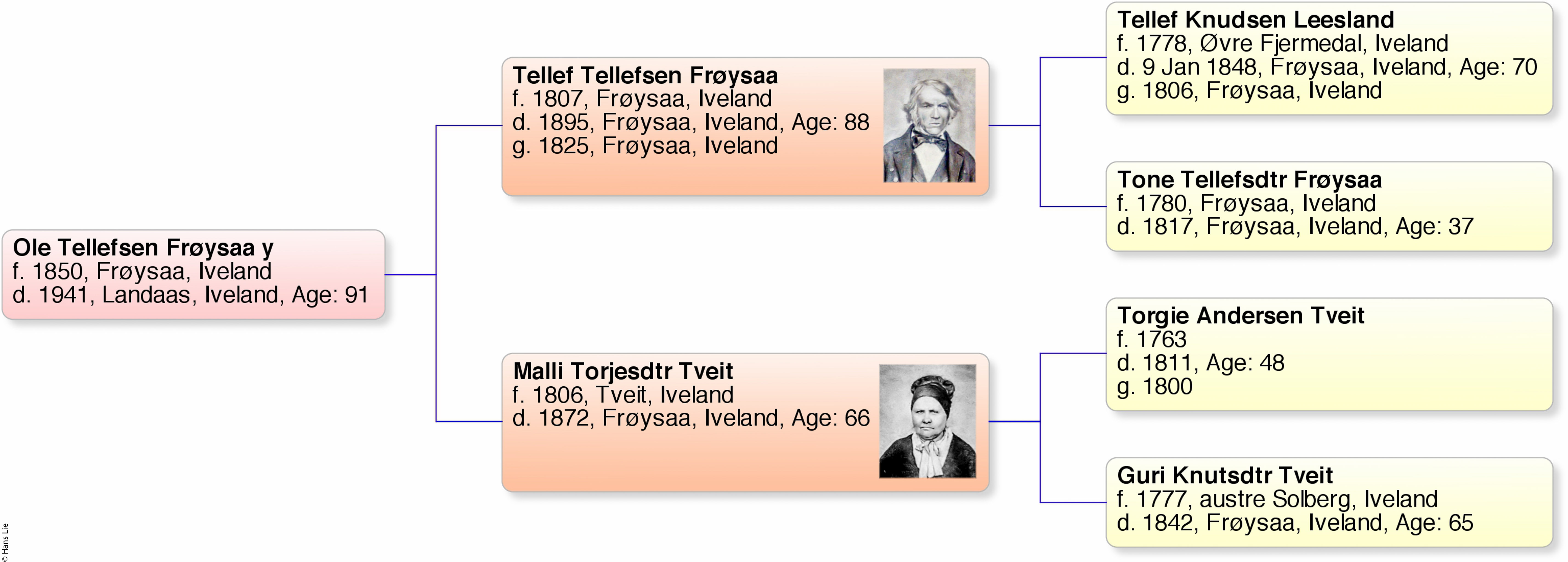 ole-tellefsen-froysaa-y